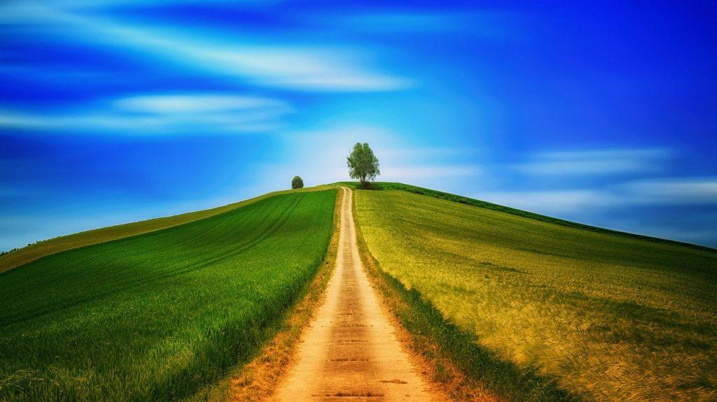 מסלול בטבע
